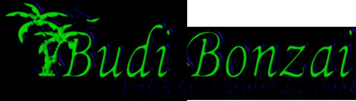 budibonzai.com